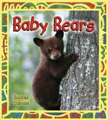 Baby Bears: It's Fun to Learn About Baby Animals